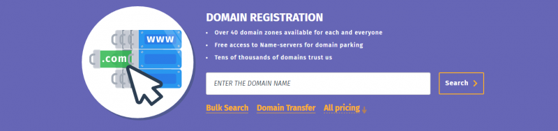 How to check the domain name's availability