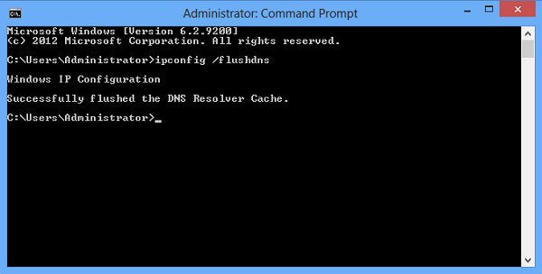 Windows Command Prompt with an executed flushdns command.